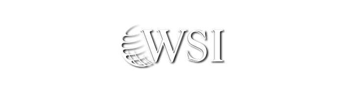 Smart WSI
