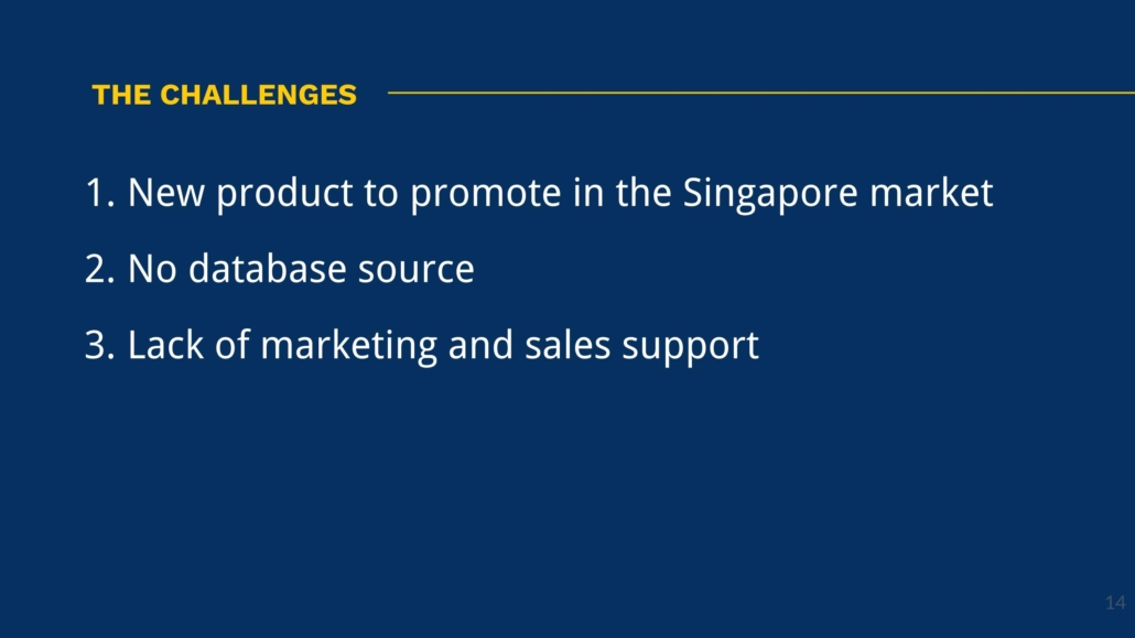 Client Case Study - The Challenges